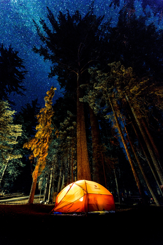 Back To Nature, Tips For A Great Outdoor Camping Trip