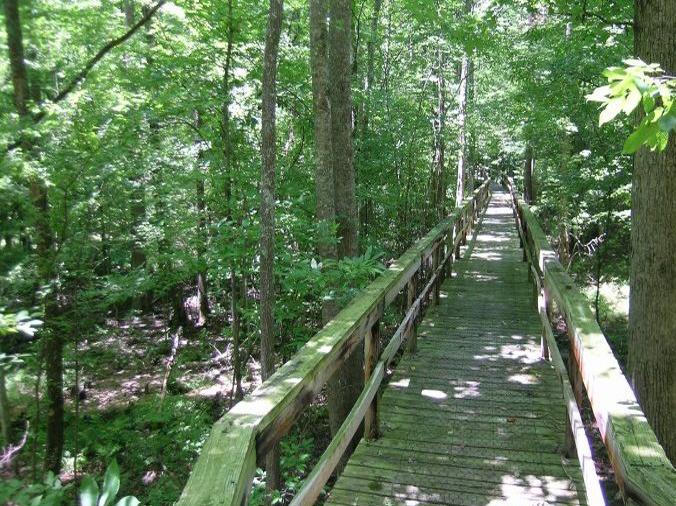 Big Hill Pond, Tennessee