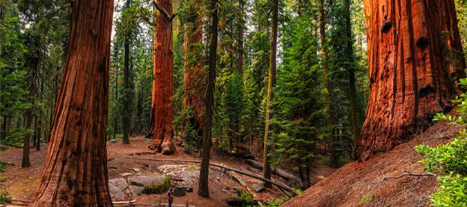 Top 10 Must Visit Camping Destinations
